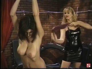 Ass Worshipped  Porn