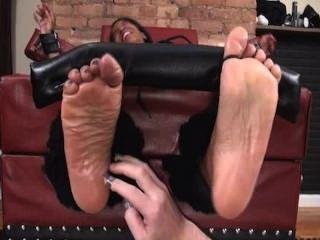 Tickle  Porn